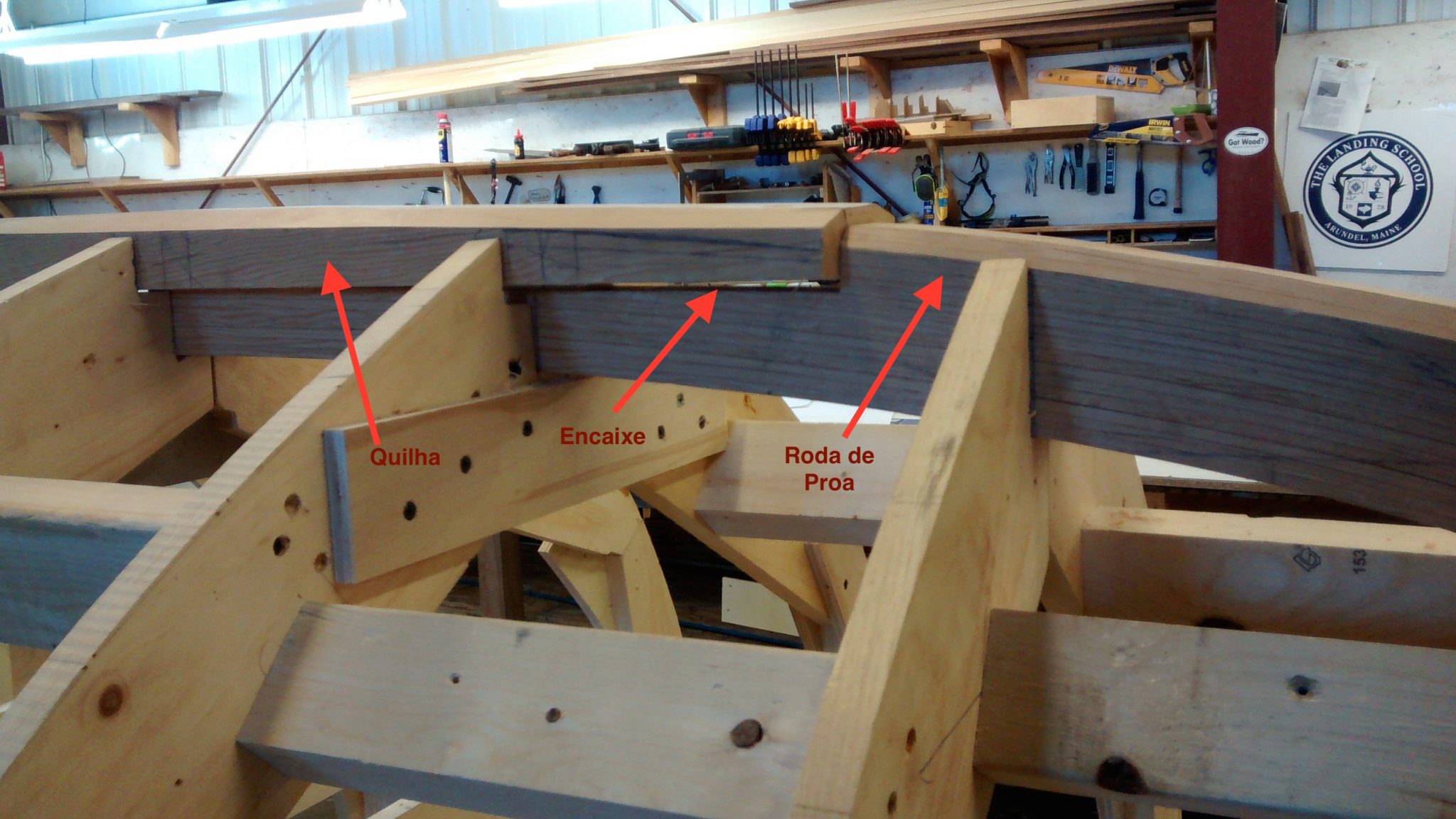 Detalhe do encaixe da roda de proa na quilha (Fonte: Cassio Neres).